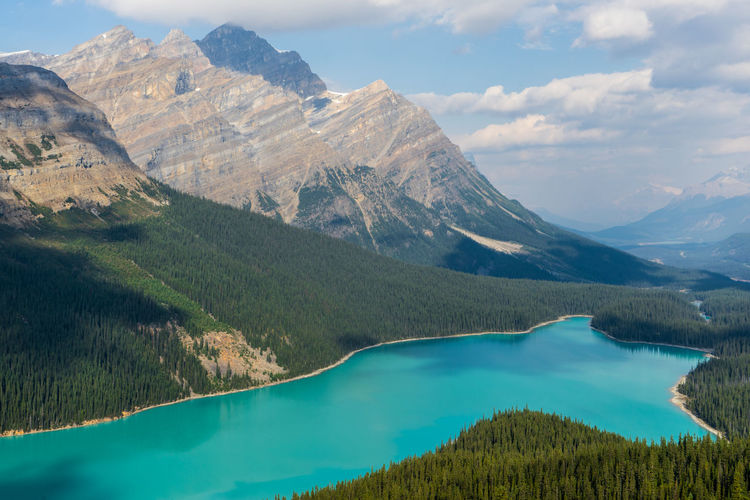 Peyto Lake Beauty In Nature Day Forest Forest Photography Forest Trees Hike Idyllic Lake Landscape Landscapes Mountain Mountain Range Mountains Nature No People Outdoor Outdoors Scenics Sky Tranquil Scene Tranquility Turquoise Water