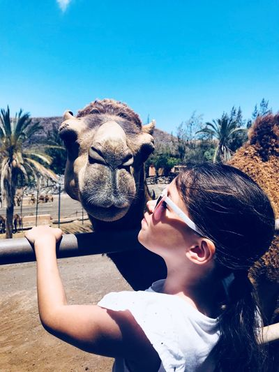 Camels and
