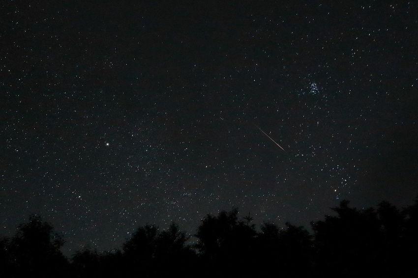 ペルセウス座流星群 Perseid Meteor Shower Pleiades Milkyway Starry Sky Astronomy Astrophotography Space Night Nightphotography Beautiful Nature Naturelovers EyeEm Best Shots Nature Is My Best Friend In The Mountains From My Point Of View EOS7DMarkII