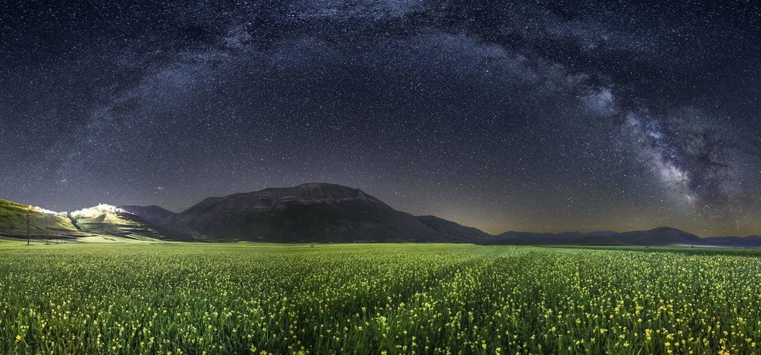 Scenic shot of green field against sky