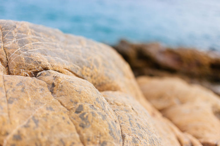 close-up light brown rocks over the beach blurred background Copy Space Beach Beauty In Nature Close-up Day Nature No People Outdoors Rock - Object Sea Sky Water