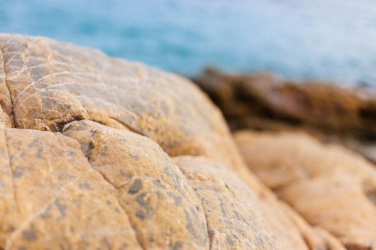 Close-up of rocks at shore
