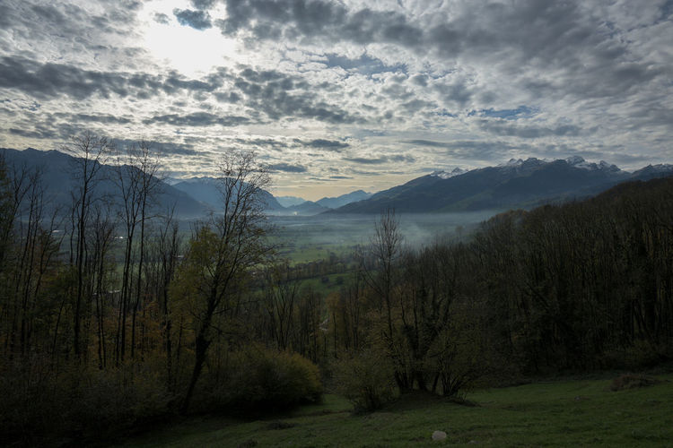 Rheintaler Höhenweg Beauty In Nature Cloud - Sky Day Forest Landscape Mountain Nature No People Outdoors Scenics Sky Tranquil Scene Tranquility Tree