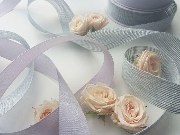 розы лепесткироз нежность ленты нежно утро красиво макро атмосфера Atmosphere Atmospäre Atmo