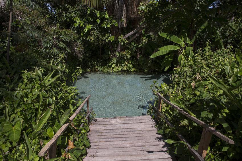 jalapão ,Tocantins ,Brasil