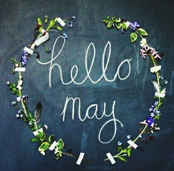 Hello May ! May May 2017 May 2017 Brings You Happiness! Flower Flowers Flowerporn Flower Collection New Month New Beginning New Hope Good Morning Flower Photography Flowers, Nature And Beauty Flower Porn Photo Photography Photooftheday Photo Of The Day Simple Simplicity Beautiful Beauty In Nature Photos Photos Around You Photo♡