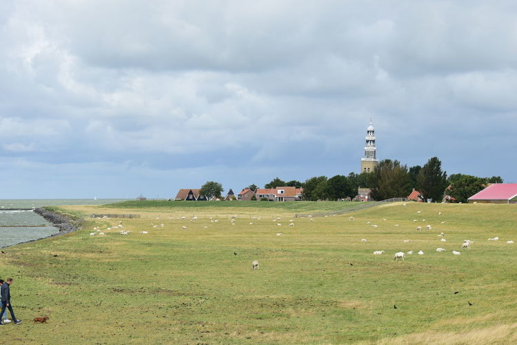 Lighthouse on field by buildings against sky