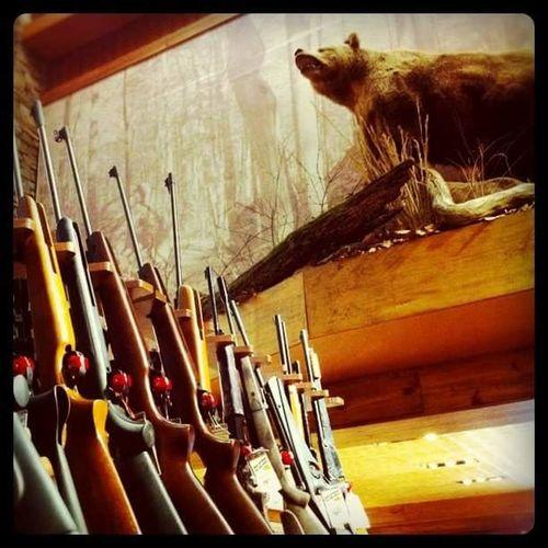 Guns and taxidermy. Guns Taxidermy Bass Pro Springfield Springfieldmo Bass Pro Shops Bass Pro Shop! Bear Missouri Hunting Springfield, MO
