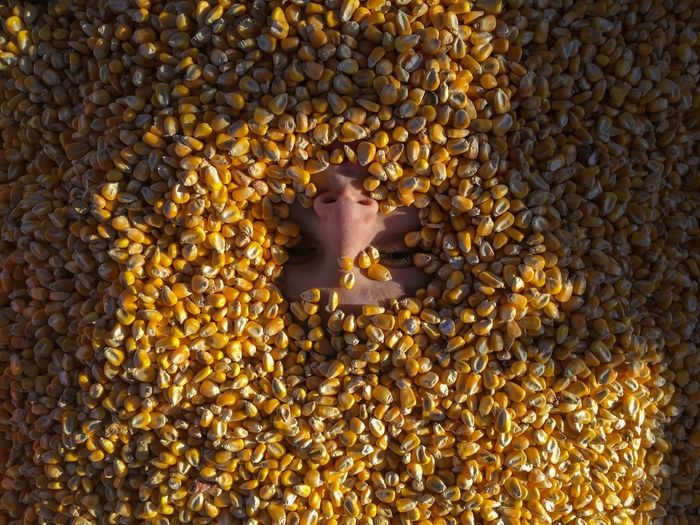 Directly above shot of child covered with corn kernels