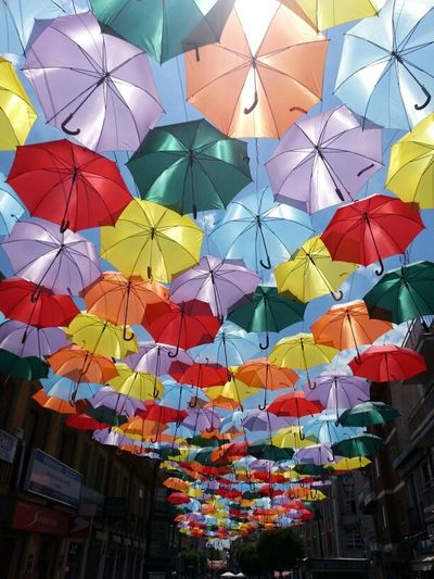 Colors Umbrella