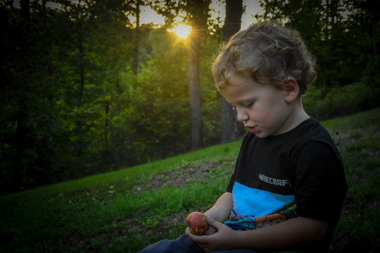 Boy looking away while sitting on land