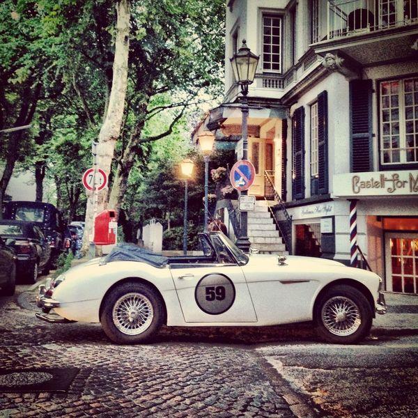 Vintage Cars Classic Car Austin Healey