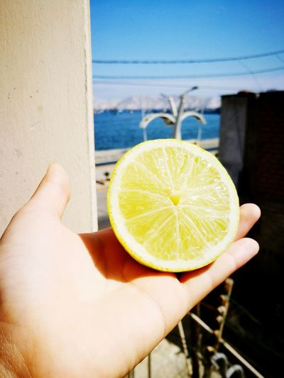 Paint The Town Yellow Lemon Human Hand Fruit Sunlight Citrus Fruit Photography Is My Escape From Reality! Sunny Day Sunny Morning Momentcam Momentsinthesun Me And My Camera In Home In House Window View Sunlight My House View Blessed  🍋limon 🌞sun 🌊sea Blue Sea And Clear Water Perfect View Perfectnature
