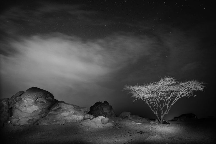 Desolate Deserts Around The World Desert Beauty Deserts Around The World Desert Landscape Desolate Tree Landscape Nature Nature_collection Fineart Monochrome Cloudy Skies Cloudy Milky Way Beauty In Nature