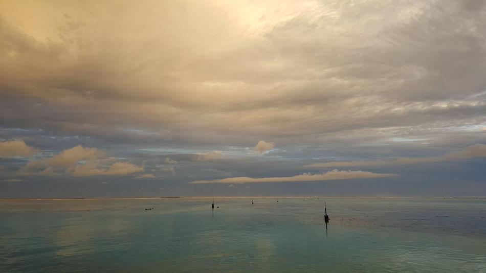 Moorea French Polynesia Holidays Art Gallery Podróże Nationalgeographic Adventure Nationalgeographic_ Traveler That's Me Travel Photography Hi! Sunset Landscape_photography Exploring Ocean
