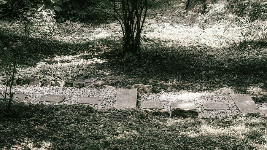 High angle view of cemetery