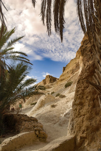 Tunis Sky Plant Tree Nature Tranquility Land Scenics - Nature Tranquil Scene Beauty In Nature Palm Tree Cloud - Sky No People Day Tropical Climate Outdoors Mountain Rock Rock Formation Environment Desert Arid Climate Climate Rosafrancomendoza Nikonphotography Tunisia