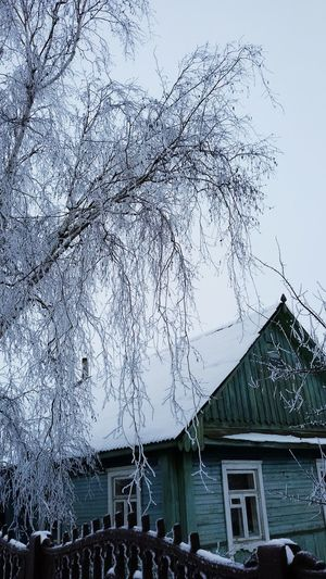 Snow ❄ Winter Theweather Weather Cold Snowfall House Theroof Coveredwithsnow Blue Sky White Nature