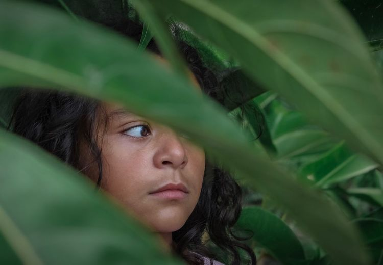 Rainforest Jungle Hiding Green Wilderness Nature Real People Headshot Portrait Leaf Plant Part One Person Green Color Close-up Looking Real People Plant Human Face