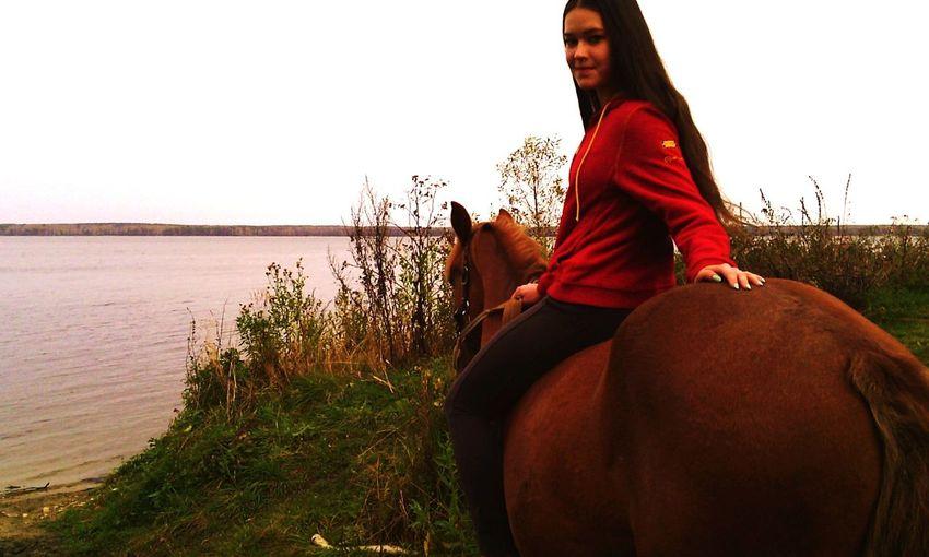Лошади-это навечно Relaxing