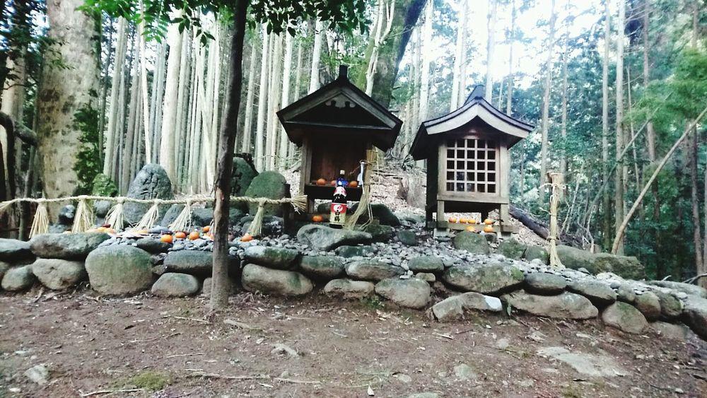 Photography 写真 Outdoors 山の神 神事