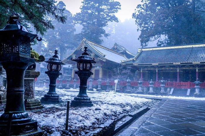 """Quietud"" en Toushou-gu Shrine Nikko 東照宮 日光 Japan Photography 神社 Japanese Shrine Fog"