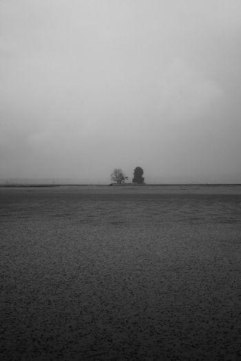 Alone Rain