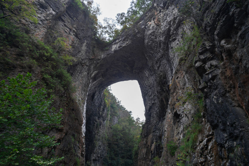 Higharchy q Natural Formation Rock Formation High Angle View Natural Bridge  Tree Ancient Civilization History Arch Natural Arch Rock - Object Architecture Sky Built Structure Civilization Rock Formation Geology Rugged Rock Physical Geography Tunnel