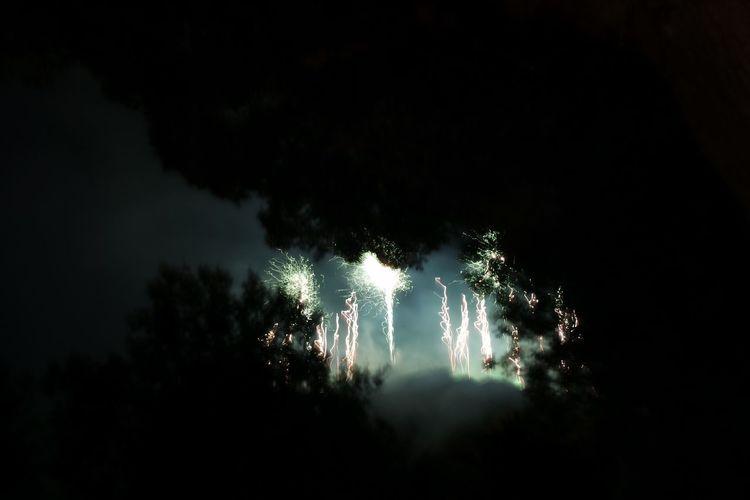 Fireworks White Travels Glowing Fireworks Night Illuminated