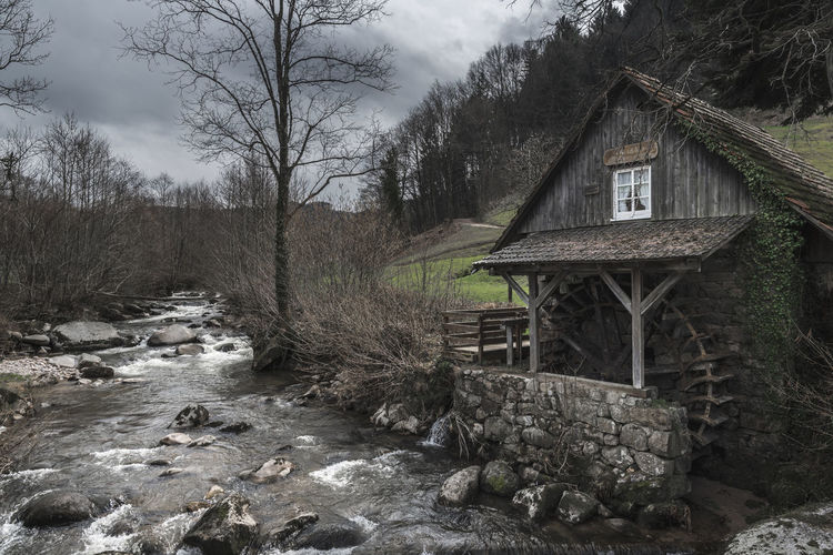 Vintage landscape with an old, abandoned water mill on an alpine river shore, on a cloudy day of early spring, in Schwarzwald, Germany. Schwarzwald Weathered Abandoned Architecture Bare Tree Black Forest Building Forest Forsaken House Mill Nature No People Non-urban Scene Old Rock Schwarzwaldhochstrasse Tree Water Watermill