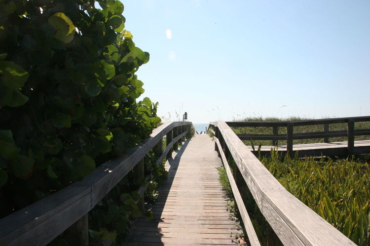 Beauty In Nature Boardwalk Day Diminishing Perspective Grass Green Green Color Growth Landscape Long Narrow Nature No People Outdoors Plant Rural Scene Scenics Sky The Way Forward Tranquil Scene Tranquility Vanishing Point Walkway Wood - Material Wooden