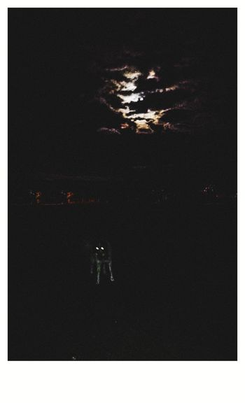 Dogs Of EyeEm Nature Country Walks Grassy Field Lighting Shadows & Lights Dogwalk Blairwitch Polaroid Walkies!! At Night Moonlight Full Moon Werewolf Pets Astronomy Water