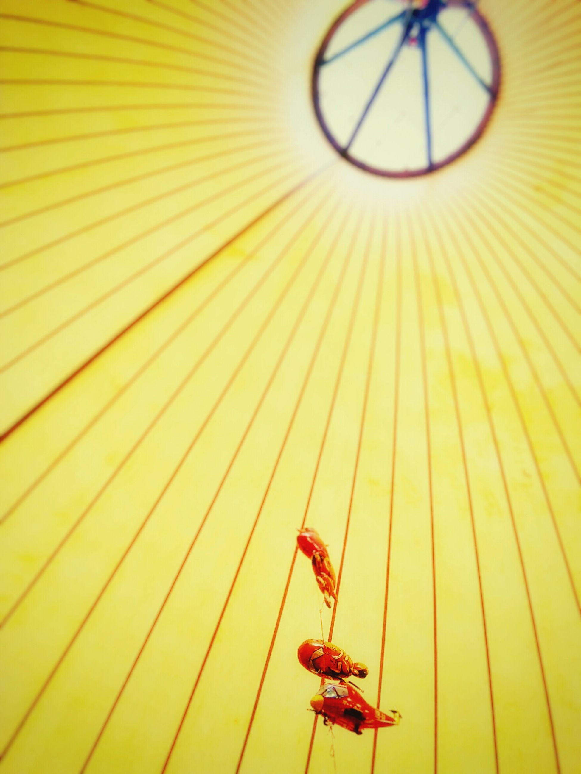 yellow, pattern, indoors, orange color, close-up, skill, sport, part of, transportation, wall - building feature, low angle view, metal, leisure activity, full frame, day, high angle view