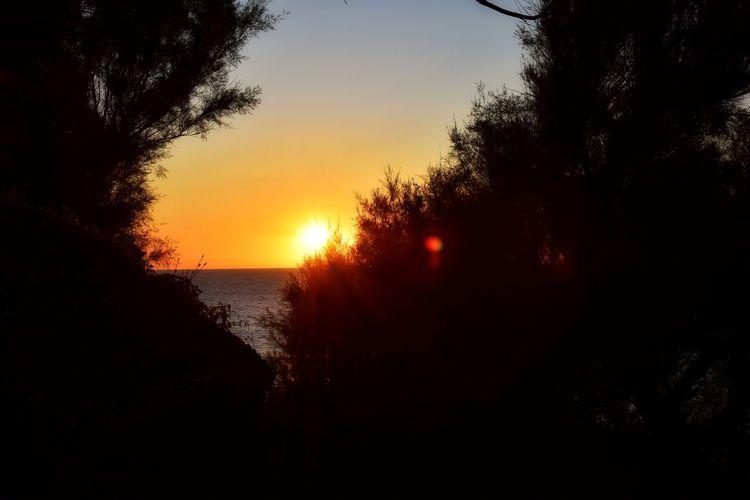 magic sunset...