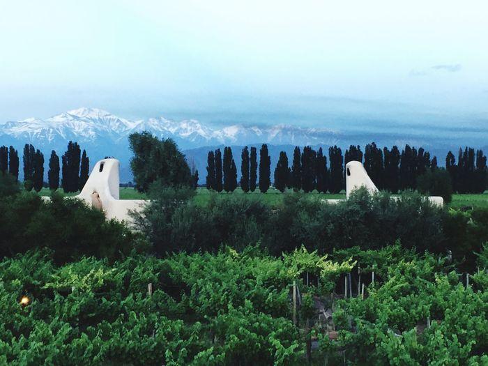 Cavas Wine Lodge Mendoza Andes RelaisChâteaux