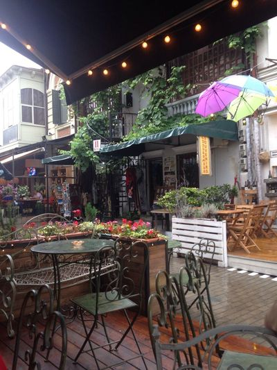 Magic moment of a rainy day Table Architecture Plant Restaurant Illuminated Building Exterior No People Chair Cafe Outdoors Flowering Plant Adventures In The City