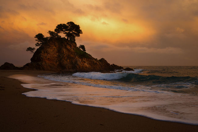 Sea Beach Water Land Sunset Beauty In Nature Sky Rock Motion Horizon Over Water Horizon Wave Rock - Object Scenics - Nature Nature Cloud - Sky Sand No People Stack Rock Waves, Ocean, Nature Trees On Rock Orange Sky Breaking Waves Hill Idyllic Scenery