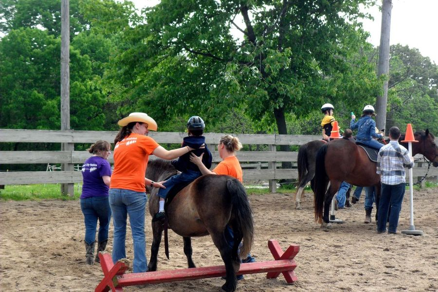Teachers n Students Collected Community Learning Horse Riding United States What I Value Service Animals