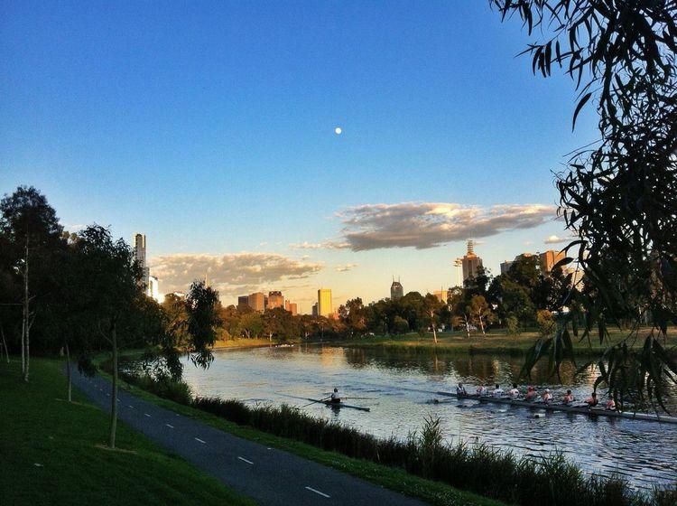 Yarra River Melbourne Yarra River Yarra Melbourne Victoria Australia Rower Water City Cityscape