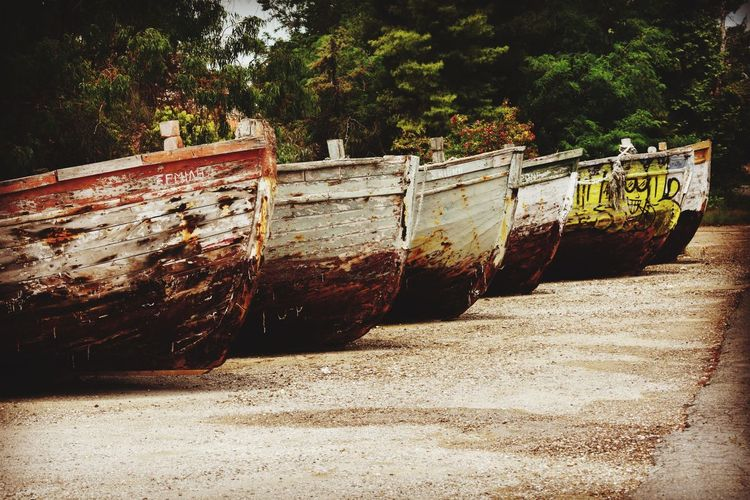 Abandoned boat moored on shore