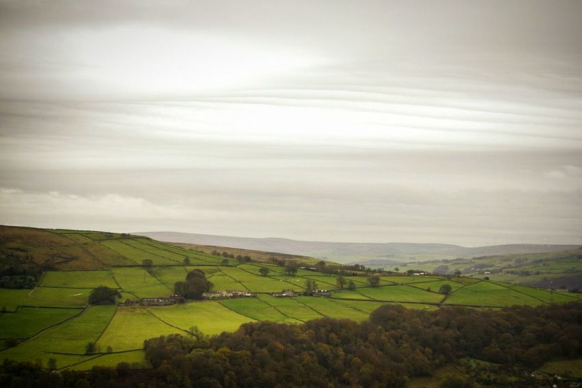 Agriculture Field Farm Rural Scene Landscape In A Row Cloud - Sky Growth Outdoors Beauty In Nature Scenics Nature No People Sky Day Hebden Bridge Tranquil Scene Autumn Tranquility Yorkshire Beauty In Nature Beautifully Organized Agriculture Nature Photography Fields