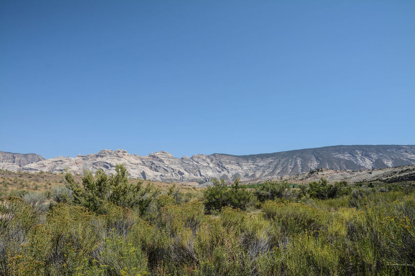 Clear Sky Desert Dinosaur National Monument Tranquility Blue Sky Mountain Scenics Tranquil Scene Travel Destinations