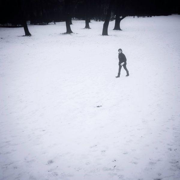 Snowminimals