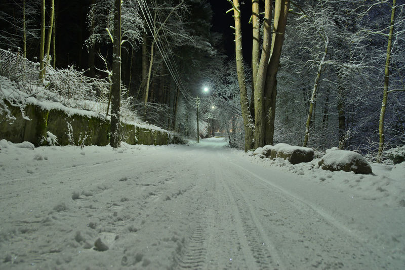 Snow covered road amidst trees at night during winter