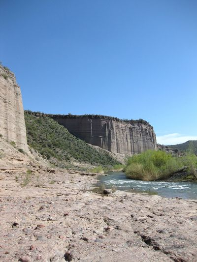 The Verde River winding through the Sonoran Desert, Arizona. Arizona Desert Beauty In Nature Clear Sky Cliff Day Desert Beauty Desert Landscape Nature No People Outdoors River Riverbank Rock - Object Saguaro Cactus Scenics Sky Stream - Flowing Water Verde River Water