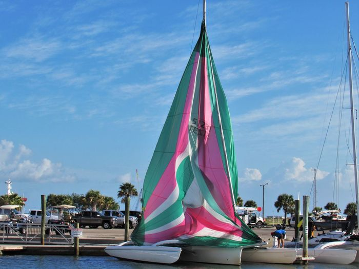 Harvest Moon Regatta Sail Boat Race 2016 Annual Race Cloud - Sky Day Getttig First Place Mode Of Transport Multi Colored Nautical Vessel Outdoors Pink Green And White Racing Sailboat Tourism Transportation Traveling Boats For Wind Catamaran Cruise Barnicles Sea Machine