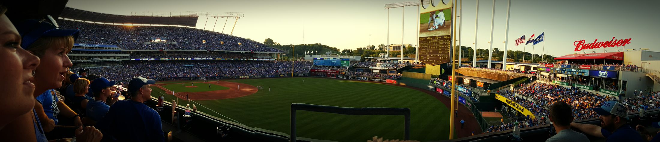 Collected Community Kansas City Royals Panoramic Photography