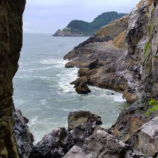 SeaLionCaves and crashing Waves on Cliffs Oregoncoast Pacificocean Travel mini Adventure CoastExplorer