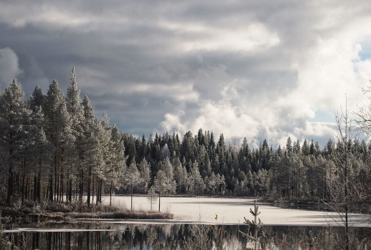 Dramatic Sky Frozen Lake Lapland Scandinavia Winter Wintertime Beauty In Nature Cloud - Sky Day Forest Lake Landscape Nature No People Outdoors Scenics Sky Tranquil Scene Tranquility Tree Shades Of Winter