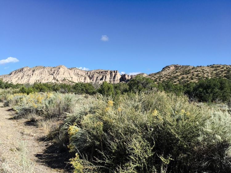 Landscape Plant Blue Tranquil Scene Tranquility Desert Arid Climate Physical Geography Growth Scenics Grass Nature Sunlight Non-urban Scene Beauty In Nature Geology Remote Uncultivated Mountain Sky Kasha-Katuwe Tent Rocks National Monument